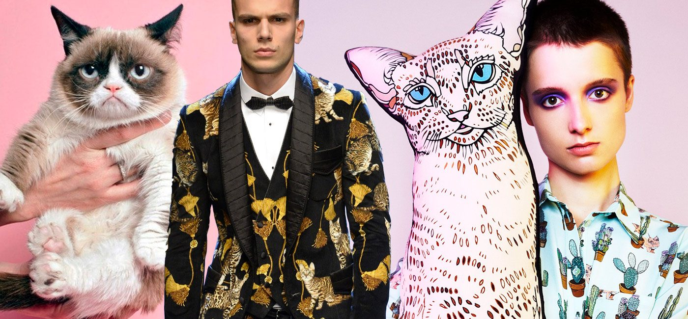 TrendCompass-Don't-be-catty