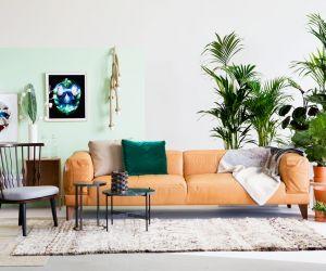 de elementen waarop planten goed groeien en dus de vereisten voor een interieur als een binnentuin niet alleen barst het hier van het natuurlijk groen